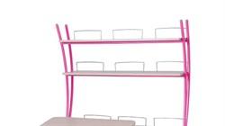 Надстройка Астек на парты ТВИН/ТВИН-2 и МОНО/МОНО-2 (Цвет каркаса:Розовый, Цвет товара:Береза) - фото 18115