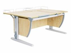Парта ДЭМИ СУТ-17-01 120х80 см + 2 задних приставки (Цвет столешницы:Клен, Цвет ножек стола:Серый) - фото 19006