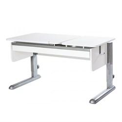 Парта для дома Астек ТВИН-2 с органайзером (Цвет столешницы:Белый, Цвет ножек стола:Серый) - фото 22406