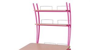 Надстройка Астек на парту КОЛИБРИ и ЮНИОР (Цвет каркаса:Розовый, Цвет товара:Бук)