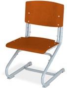 Растущий стул ДЭМИ ДЕРЕВО СУТ.02-01 (регулируется в 3-х плоскостях) (Цвет сиденья и спинки стула:Яблоня, Цвет каркаса:Серый)